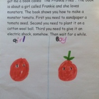 The Frankie Files Book Review from young inventor/scientist